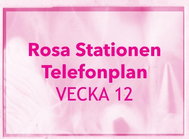 RosaStationenvecka12ljus